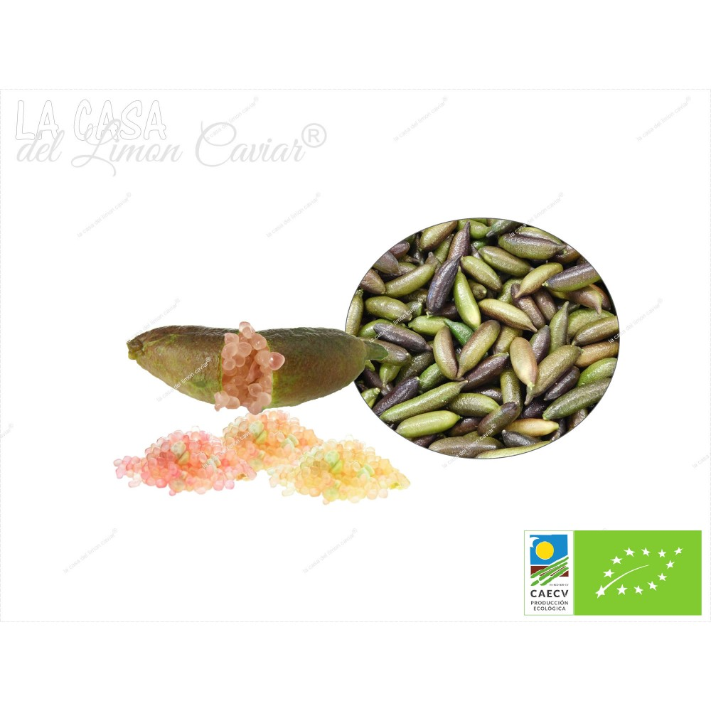 Citron Caviar MIELE